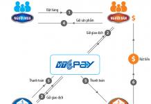 Mô hình cổng thanh toán trực tuyến VTC Pay