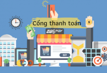 cach-chon-cong-thanh-toan-phu-hop 1